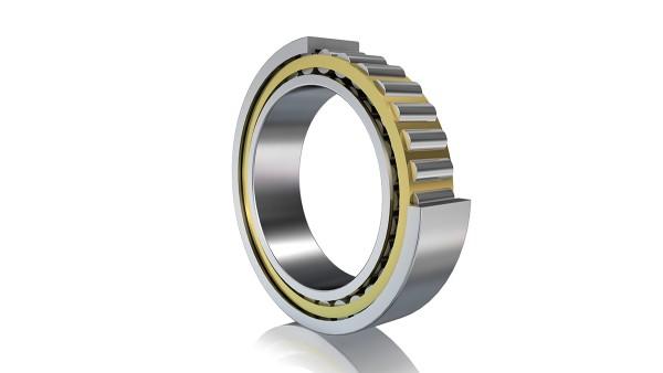 FAG:s cylindriska rullager (frigående lagring)